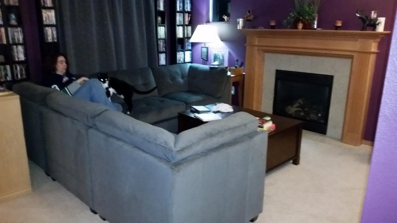 Also this weekend: new couch arrived.