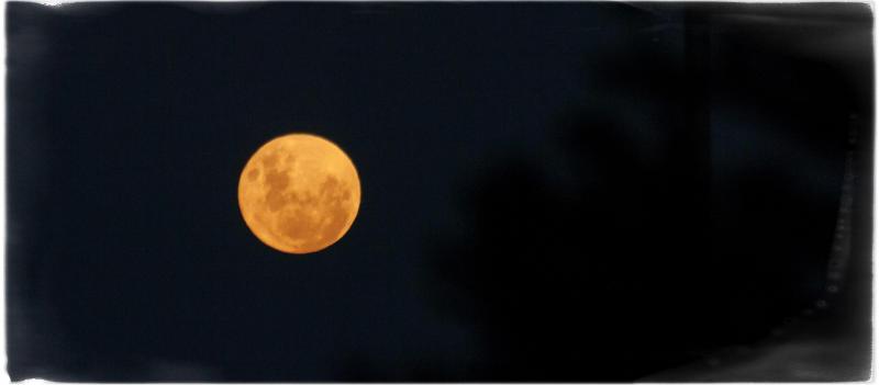 Summer Evening : Full Moon