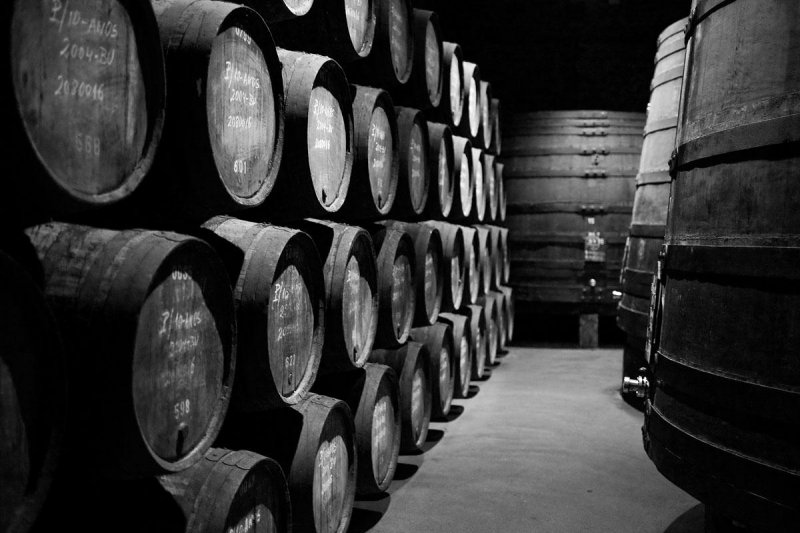 The cost of a cellar